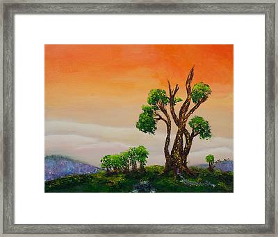 Tranquility Framed Print by William Killen