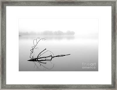 Tranquillity Framed Print by Richard Burdon