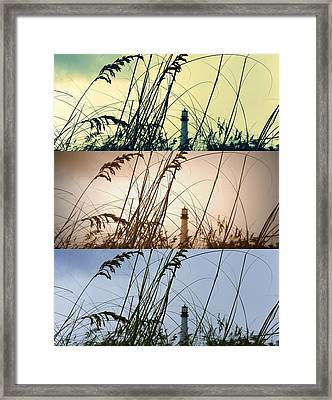 Transitions Framed Print by Laurie Perry