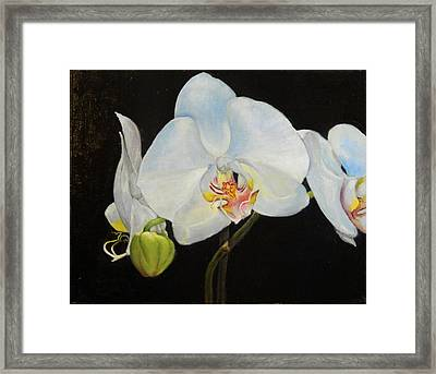 Framed Print featuring the painting Translucent Orchids by Sandra Nardone