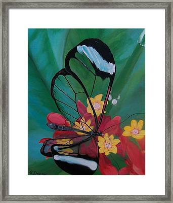 Transparent Elegance Framed Print