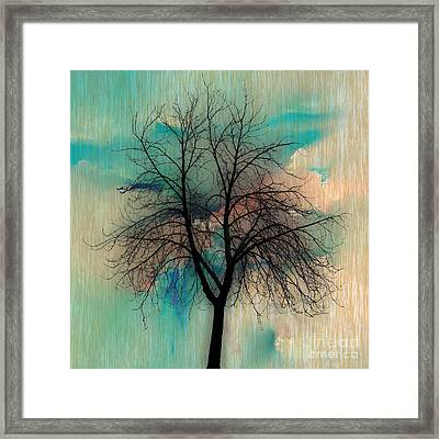 Transparent Life Form Framed Print by Marvin Blaine