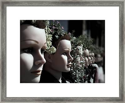 Transplants Framed Print by Micki Findlay