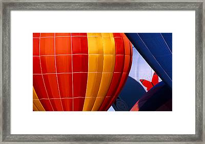 Trapped Butterfly Framed Print by Ken Evans