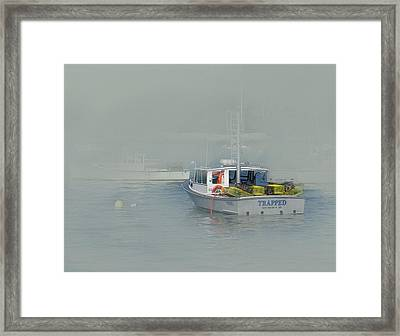 Trapped In The Fog Framed Print