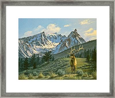 Trapper Peak - Bull Elk Framed Print by Paul Krapf