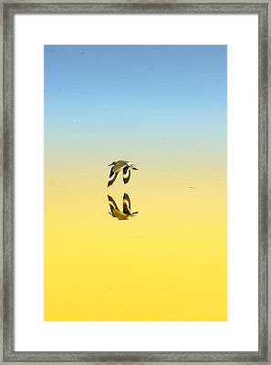Travel In Stillness Framed Print