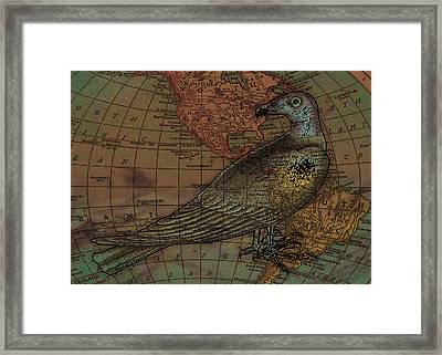 Travelling With The Buzzard Framed Print by Sarah Vernon