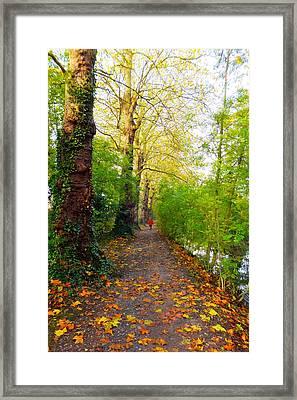 Traversee De L'automne Au Bord Du Canal De Seclin Framed Print
