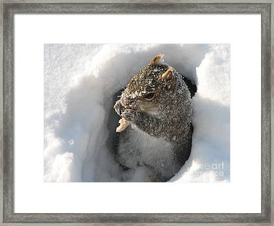 Treasure Found Framed Print by Roxy Riou