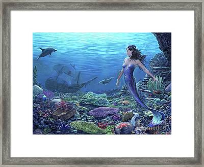 Treasure Of The Sea Framed Print by Stu Shepherd