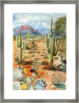 Treasures Of The Desert Framed Print