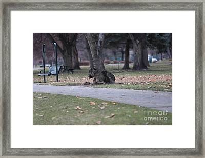 Tree- A Creature Within? Framed Print