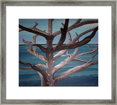 Tree And Beach Framed Print