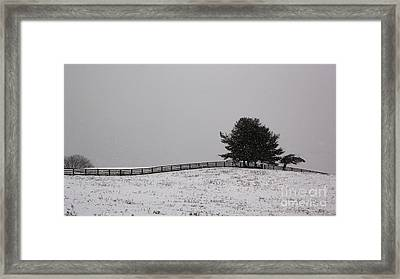 Tree And Fence In Snow Storm Framed Print