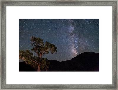 Tree And Milky Way Framed Print by Cat Connor