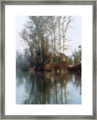 Tree And Reflection Framed Print