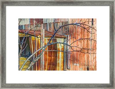 Tree And Rust Framed Print by Jim Wright