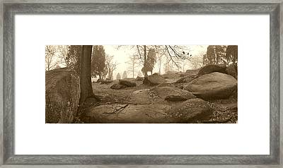 Tree And Steps At Devils Den - Gettysburg Framed Print by Jan W Faul