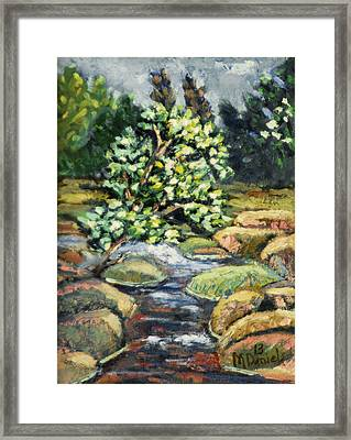 Tree And Stream Framed Print