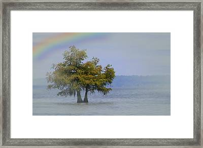 Framed Print featuring the mixed media Tree And The Rainbow by Bob Pardue
