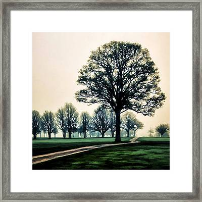 Tree At Dawn On Golf Course Framed Print