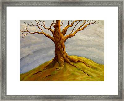 Tree At The Top Of The World Framed Print