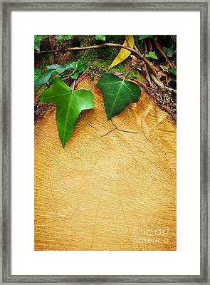 Tree Background Framed Print by Carlos Caetano