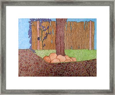 Tree Bottom 3 Of 3 Framed Print