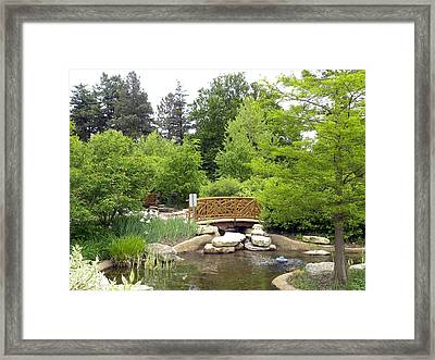 Tree Branch Bridge Framed Print