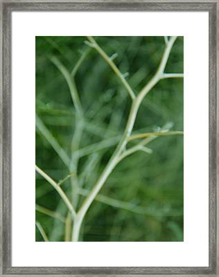 Tree Branches Abstract Green Framed Print by Jennie Marie Schell