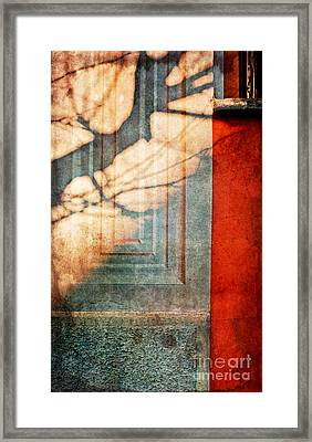 Tree Branches Shadow On Wall Framed Print by Silvia Ganora