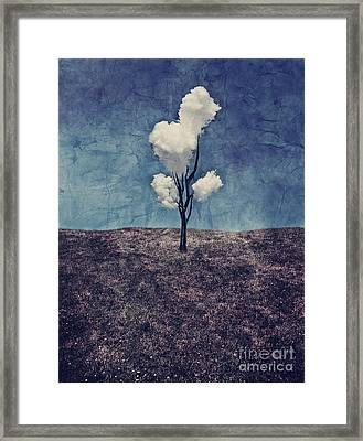Tree Clouds 01d2 Framed Print by Aimelle
