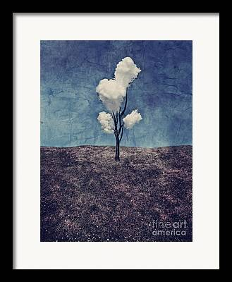 Surrealistic Digital Art Framed Prints