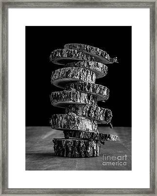 Tree Deconstructed Framed Print by Edward Fielding