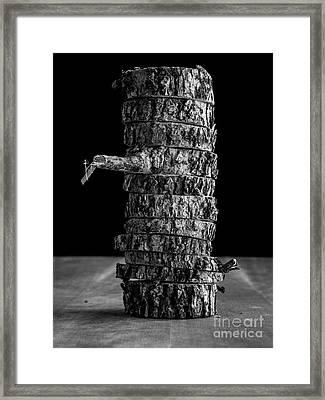 Tree Deconstructed II Framed Print by Edward Fielding