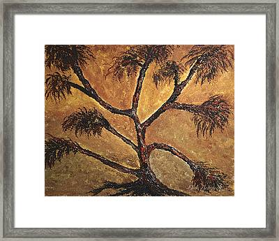 Tree Framed Print by Dick Bourgault