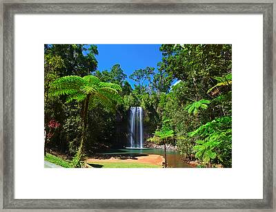Tree Fern And Waterfall In Tropical Rain Forest Paradise Framed Print