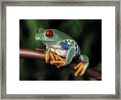 Tree Frog Framed Print by Cole Black