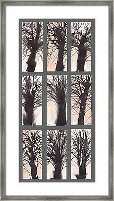 Tree Grid Framed Print by Sumiyo Toribe
