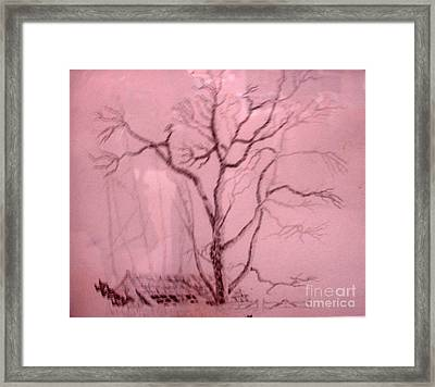 Tree Growing Out Of Barn Framed Print