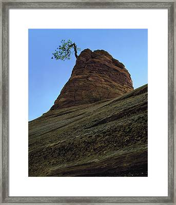 Tree Hoodoo Framed Print