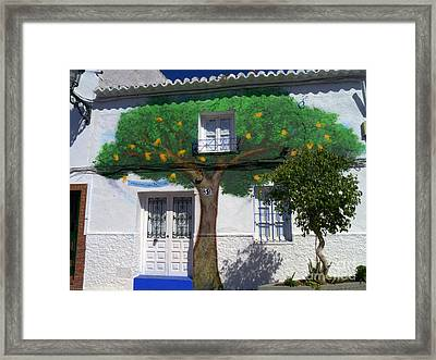 Tree House In Spain Framed Print