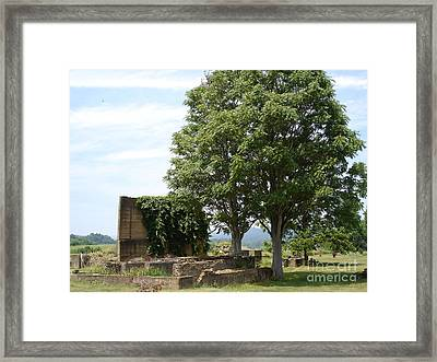 Framed Print featuring the photograph Tree House by Jane Ford
