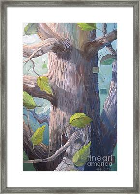 Tree Hugger Framed Print by Paula Marsh