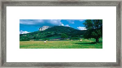 Tree In A Field, Mevouillon Framed Print