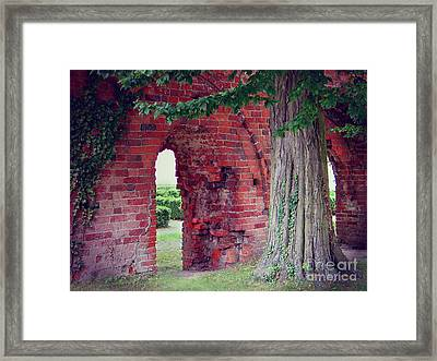 Framed Print featuring the photograph Tree In An Old Cloister by Art Photography