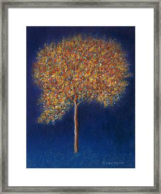 Tree In Blossom Framed Print by Peter Davidson