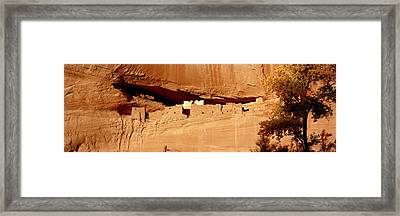Tree In Front Of The Ruins Of Cliff Framed Print by Panoramic Images
