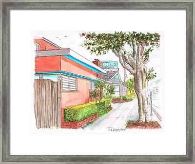 Tree In Laguna Riviera Hotel In Laguna Beach - California Framed Print by Carlos G Groppa